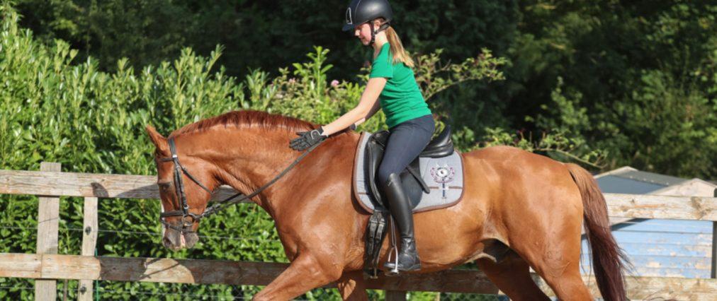 Preise Reiturlaub – Lehrgänge mit eigenem Pferd